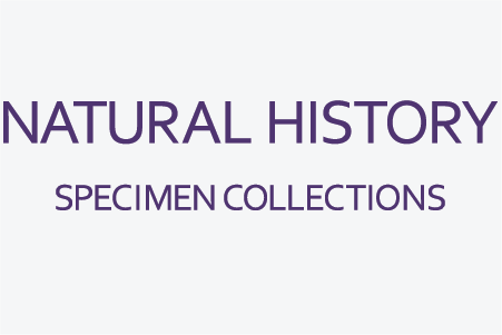 Natural History Specimen Collections