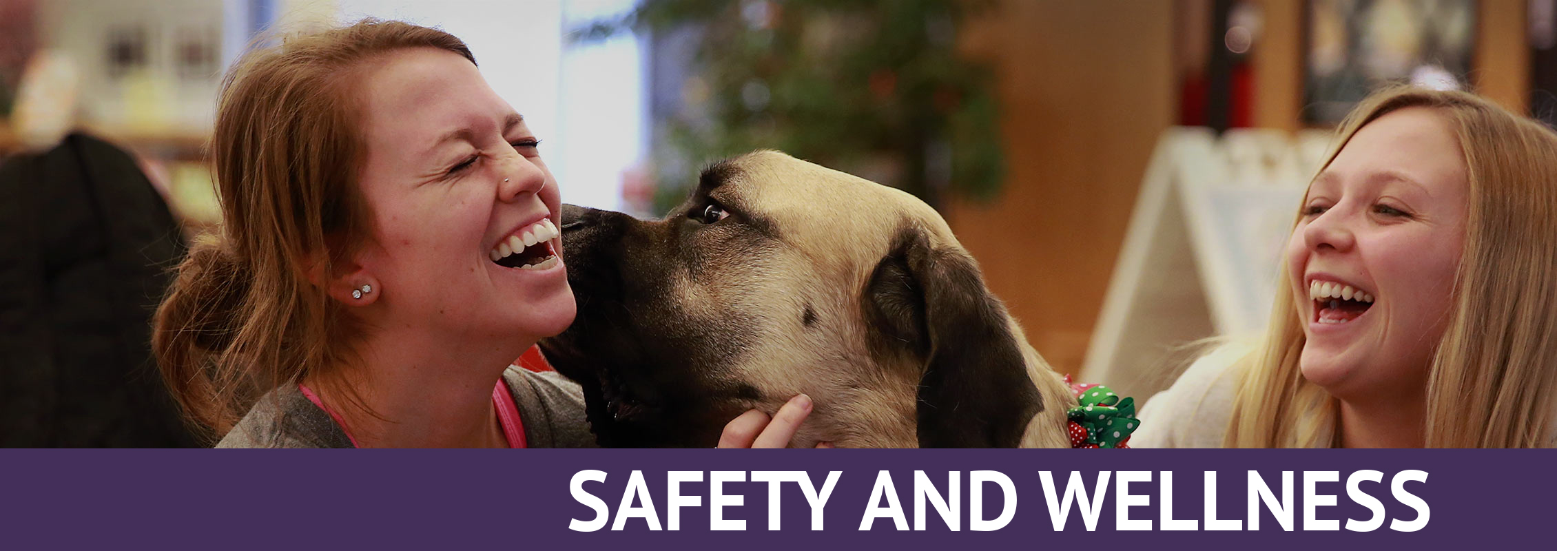 Safety and Wellness: Two students laughing as they pet a dog