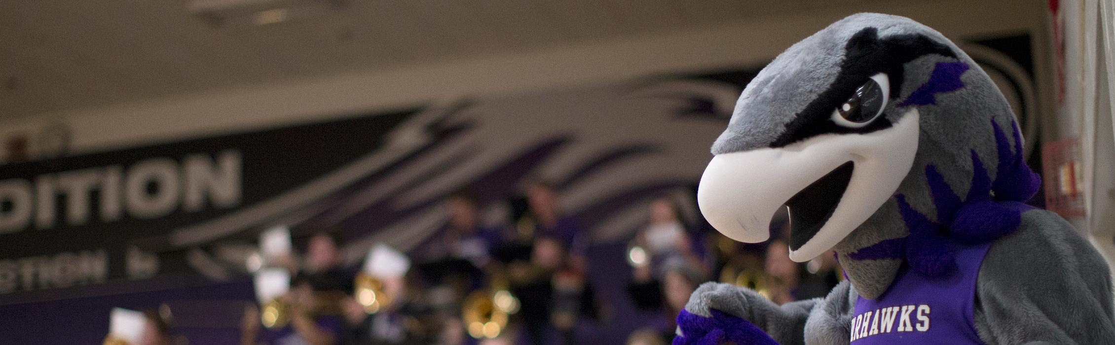 Willie Warhawk at a UW-Whitewater football game